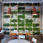 que es un restaurante ecologico