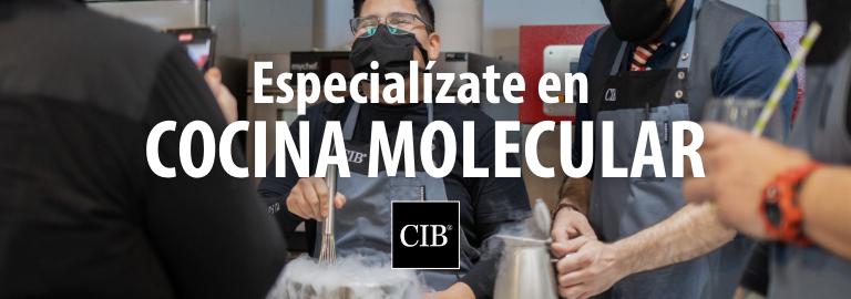 Curso de cocina molecular